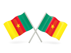 Higher education in Cameroon